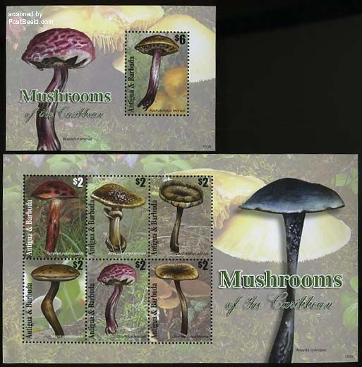 Mushrooms 2 s/s