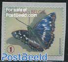 Butterfly 1v s-a