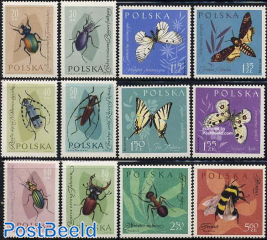 Insects, butterflies 12v