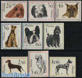 Dogs 9v