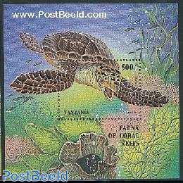 Sea turtle s/s