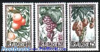 Fruits 3v