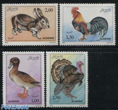 Animals 4v