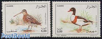 Water birds 2v