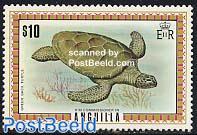 Definitive 1v, turtle