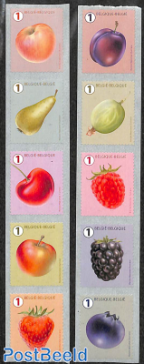 Fruits 10v s-a