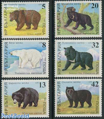 Bears 6v