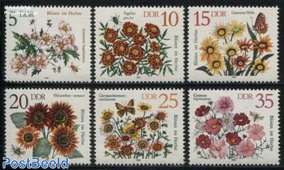 Autumn flowers 6v