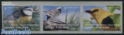 Birds 3v s-a