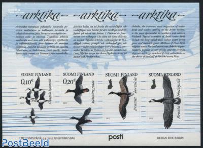 Arktika, birds 4v m/s
