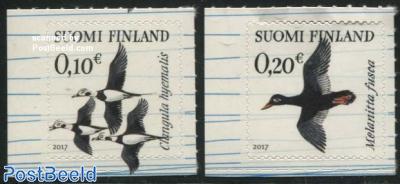 Arktica, birds 2v s-a