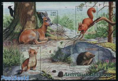 Animals s/s