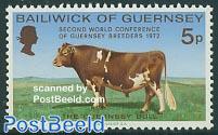 Bull congress 1v