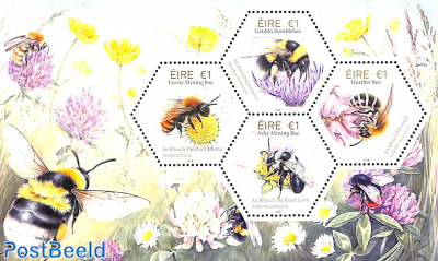 Bees s/s