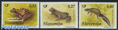 Frogs 3v
