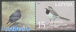 Bird 1v+tab