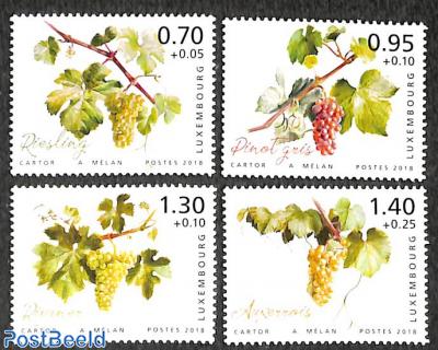 Moselle wine region 4v