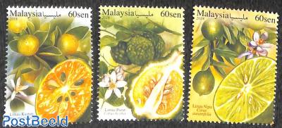 Citrus fruits 3v