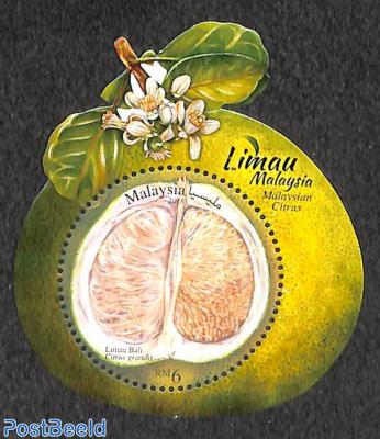 Citrus fruits s/s