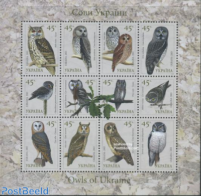 Owls 12v m/s