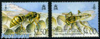 Paper wasp 2v