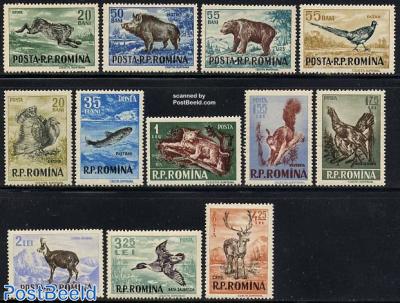 Animals for hunting 12v