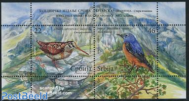Protected birds s/s, joint issue Bulgaria
