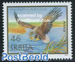 Eagle 1v, joint issue Austria