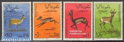 Gazelles 4v