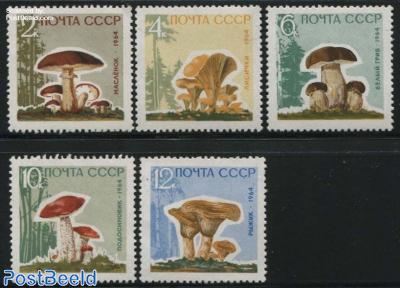 Mushrooms 5v