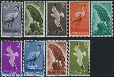 Birds 9v