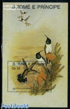 Hummingbird s/s