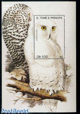 Snow owl s/s