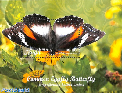 Common Eggfly butterfly s/s