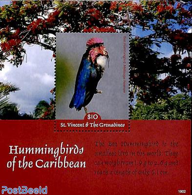 Hummingbirds s/s