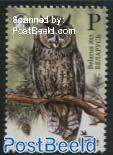 Bird of the Year, Long-Eared Owl 1v