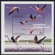 Flamingo s/s