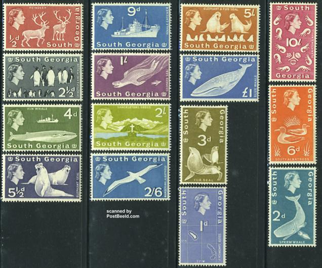Definitives, fauna 15v