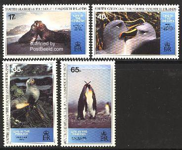 Antarctic animals 4v