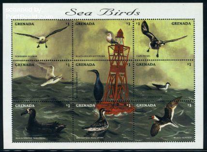 Sea birds 9v m/s