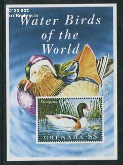 Egyptian goose s/s