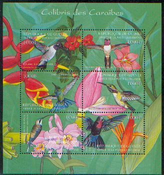 Hummingbirds 6v m/s /Archilucbus