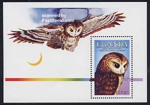 J.J. Audubon, owl s/s